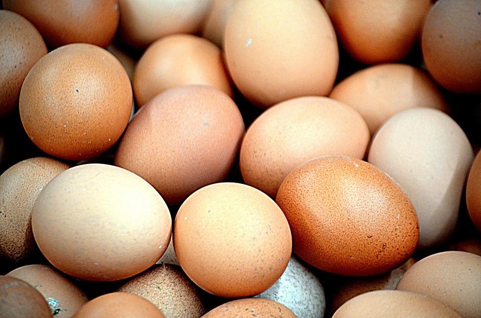 Trece Países En Alerta Por Huevos Contaminados Con Fipronil