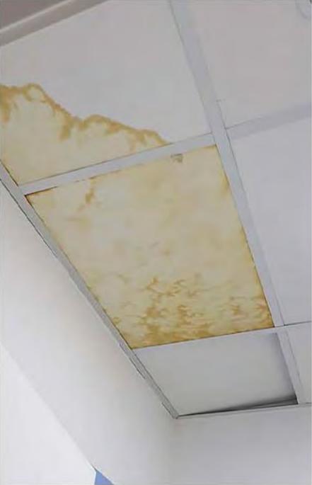 informe pericial de daños